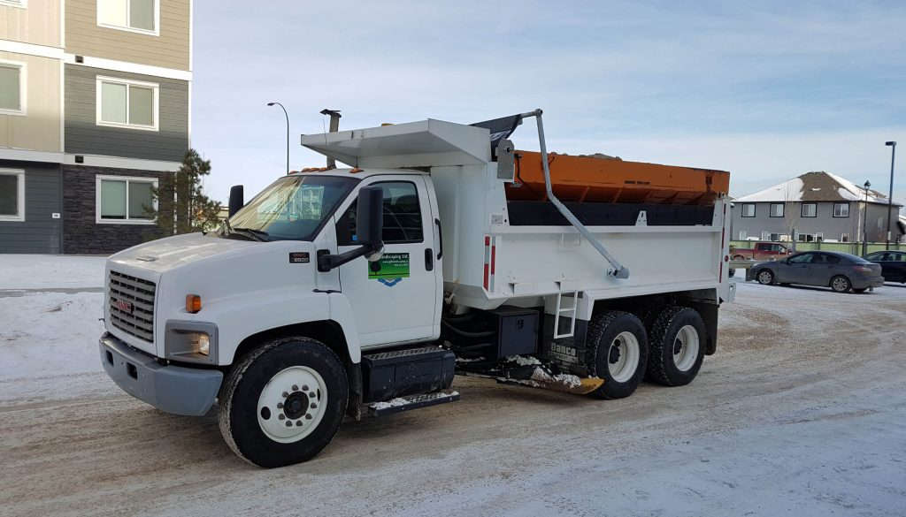 parking snow removal edmonton