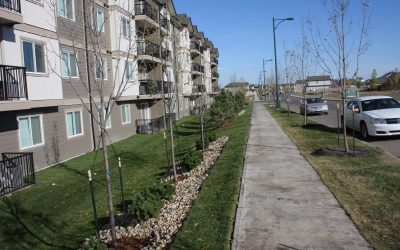 Summer Commercial Landscaping and Maintenance With GDB Landscaping