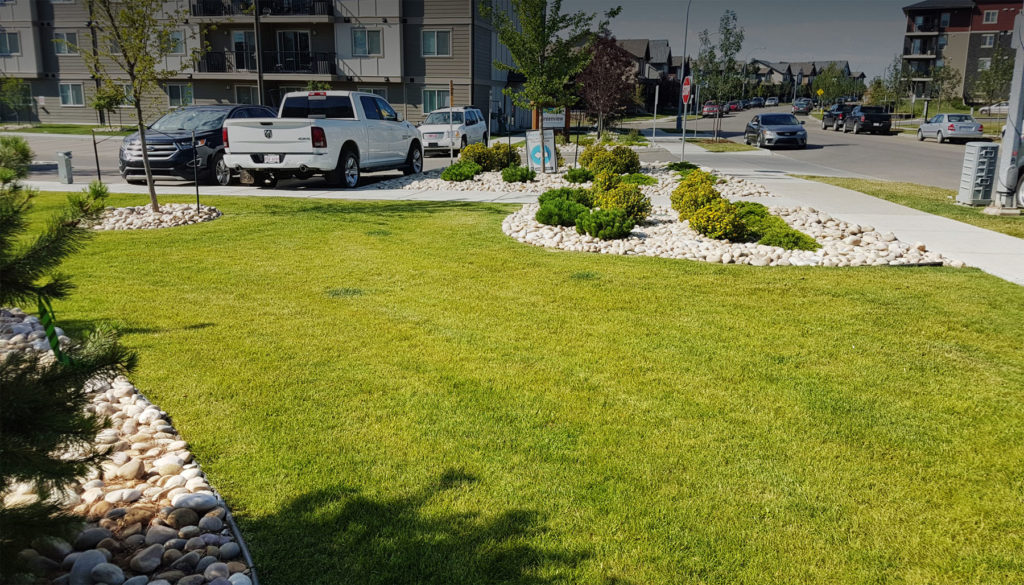 commercial fall landscaping edmonton